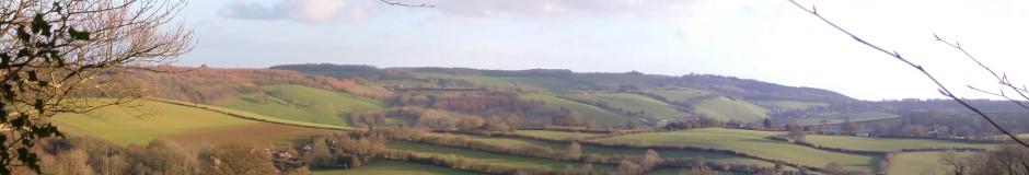quantock landscape
